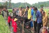 Sleman menyelenggarakan Pekan Daerah Kontak Tani Nelayan Andalan 2019