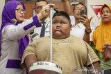 Satia Putra (7) anak penyandang obesitas dengan berat badan mencapai 101 kg dibantu petugas medis dan kedua orangtuanya mengukur tinggi badan sebelum pemeriksaan medis di Rumah Sakit Umum Daerah (RSUD) Karawang, Karawang, Jawa Barat, Rabu (3/7/2019). Menurut pihak rumah sakit, menunggu keputusan hasil pemeriksaan dan observasi satia akan tetap ditangani oleh RSUD Karawang atau dirujuk ke Rumah Sakit Hasan Sadikin (RSHS) Bandung untuk menjalani penanganan lebih lanjut. ANTARA JABAR/M Ibnu Chazar/agr