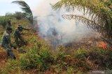 20 Hektare lahan kebakaran melanda di Nagan Raya Aceh