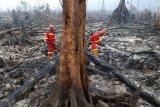 Kesadaran masyarakat Batanghari membuka lahan tanpa membakar masih rendah