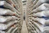Bulog agar tingkatkan kualitas serapan beras