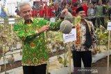 Dirjen: Ekspor Indonesia hortikultura tembus 113 negara
