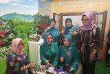 TP PKK Provinsi Lampung perkuat kemitraan dengan BKKBN