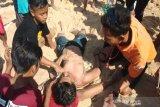 Ratusan wisatawan tersengat ubur-ubur saat berlibur di Pantai Selatan Gunung Kidul