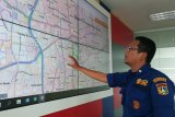 327 sarang  tawon di DKI dievakuasi