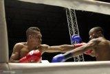 Tibo Monabesa, bekas sopir angkot jadi juara tinju dunia