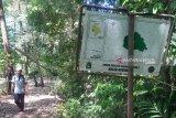 Pesona Gunung Ranai yang terbengkalai