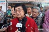 Menteri LHK: Konsep ibu kota baru sekaligus perbaiki kondisi lingkungan
