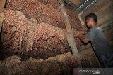 Petani Palu produksi bawang merah lokal sekitar 702 ton