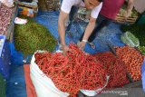 Pedagang menata cabai merah dan cabai rawit di pasar tradisional Peunayung, Banda Aceh, Jumat (12/7/2019). Pedagang menyatakan, beberapa komoditas terus mengalami kenaikan dan kenaikan drastis terjadi pada komoditas cabai merah dari Rp 70.000 menjadi Rp85.000 perkilogram, cabai hijau dari Rp45.000 naik menjadi Rp60.000 perkilogramdan cabai rawit dari Rp50.000 naik menjadi Rp60.000 perkilogram, akibat persediaan cabai menipis terkait minimnya pasokan.(Antara Aceh/Ampelsa)