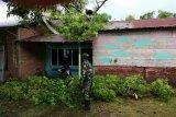 Tujuh unit rumah warga rusak diterjang puting beliung