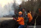 Belasan hektare lahan gambut pinggiran kota terbakar