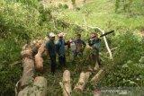 Polhut tangkap pelaku penebangan pohon di Hutan Sumbawa