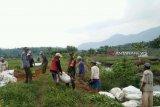 Babinsa Musirawas perbaiki saluran irigasi persawahan