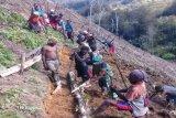 Babinsa Koramil Tiom ajak warga buka lahan untuk kebun