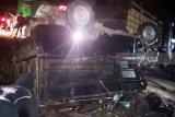 Mobil pengangkut babi alami kecelakaan, satu penumpang meninggal