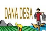 DPMD Sleman rutin memberi pembinaan pengelolaan dana desa