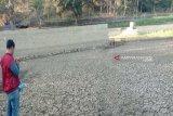 Sebanyak 355 telaga di Gunung Kidul kering