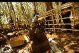 Sejumlah warga memperhatikan situs arca yang ditemukan di Desa Galuh Timur, Brebes, Jawa Tengah, Selas (23/7/2019). Menurut Badan Pelestarian Cagar Budaya (BPCB) Jawa Tengah, situs cagar budaya yang ditemukan warga sekitar sejak dua pekan terakhir seluas 40 meter persegi itu, diduga berupa bangunan candi berupa bagian sumur dan arca berbentuk manusia darmapala, naga serta patung kura-kura. ANTARA FOTO/Oky Lukmansyah/nym.