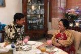 Megawati-Prabowo berbincang empat mata sambil nikmati kelapa muda
