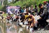 5.000 ikan uceng ditebar di perairan umum Temanggung