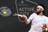 Basilashvili melaju ke final Hamburg Open