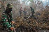 Satgas Karhutla Ogan Ilir sosialisasi  pencegahan kebakaran hutan