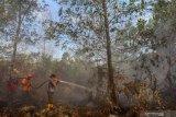 Waduh, pemadaman kebakaran lahan di Riau terkendala sumber air mengering