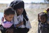 Usaha Bangladesh kirim pengungsi Rohingya kembali gagal