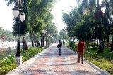 Bunga warna kuning akan dominasi Taman Ngagel Surabaya