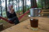 Wisata kuliner kopi