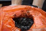 Pertamina berkoordinasi dengan kementerian tanggulangi dampak tumpahan minyak