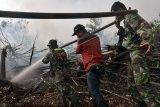 200-an prajurit TNI ikut berjibaku padamkan karhutla di Pelalawan Riau