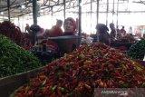 Harga cabai bertahan tinggi, Surakarta belum akan operasi pasar