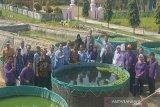 DKP Kulon Progo mendorong pembudi daya ikan menerapkan
