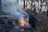 Pemadaman api di Gunung Arjuno terhambat medan curam