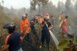 70 hot spot terpantau di Barito Selatan