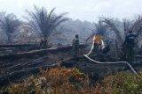 BMKG temukan 18 titik panas dalam dua hari terakhir di Aceh