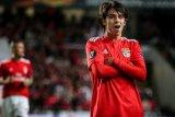 Joao Felix bersinar ketika Atletico benamkan MLS All-Stars 3-0