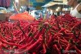 Cabai merah dan daging sate jadi penyumbang inflasi tertinggi di Kota Padang selama Juli