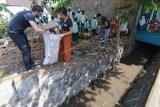 Relawan asing membersihkan sampah