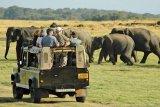 Pemerintah Sri Lanka berikan fasilitas bebas visa bagi wisatawan Indonesia