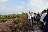 Gubernur Kalteng: UEA berencana tanamkan investasi pangan 500 juta dolar AS