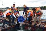 Koarmada III TNI AL bantu benih ikan untuk nelayan