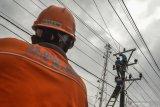 Pakar UGM: PLN perlu membangun pembangkit listrik tersebar