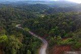 Pemerintah hentikan pemberian izin baru kelola hutan gambut