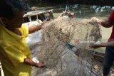 Nelayan Bekasi minta kompensasi akibat tumpahan minyak