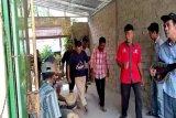 Geliat masyarakat adat Lampung melestarikan budaya asli