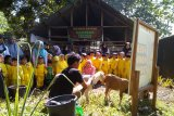Dompet Dhuafa gandeng TK Khalifah Makassar mengenal dini hewan kurban