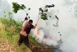 Selain PT SSS, Polda Riau berikan sinyal tetapkan korporasi lain pembakar lahan
